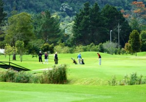 Plettenberg Bay Country Club