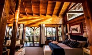 luxury room ceiling view